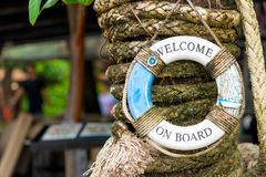 Beautiful little lifebuoy with a written greeting on the trunk o. F a palm tree Stock Image