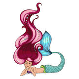 Beautiful little mermaid. Stock Images