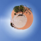 Beautiful Little planet of Dune 45. In sossusvlei Namibia, best place in namibia. Ecology concept. Tiny dry sand planet. Ecology concept. Save world nature Stock Photos