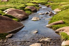 Beautiful little stream Royalty Free Stock Photo