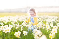 Beautiful little toddler girl field of white daffodil flowers Royalty Free Stock Photography