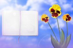 Beautiful live vittrock violets with opened note book with blank place for your information on left on cloudy sky background. Flor. Beautiful live vittrock royalty free stock photography