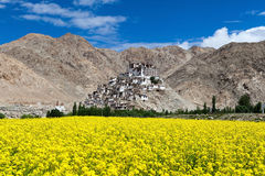 Beautiful location of Chemrey monastery. Situated on the top of hill with yellow mustard field foreground and big mountain,clear blue sky background. Leh,Ladakh Stock Images