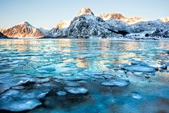 The beautiful Lofoten. Landscape from Lofoten, Norway with mountains reflected in the water full of ice cubes stock image