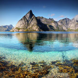 Lofoten, Seashore, Landscape Royalty Free Stock Photography