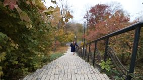 Attractive woman walking downstairs in autumn park stock footage