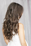 Beautiful  long brown hair. Royalty Free Stock Photography