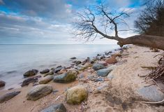 Beautiful long exposure landscape of rocky sea shore Royalty Free Stock Images