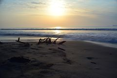 Beautiful long exposure photography of sunrise at sea shore. With wooden sticks in front focus on sand royalty free stock photo