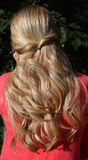 Beautiful long female hair. Back view of woman with long, curly hair royalty free stock image