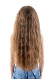 Beautiful long hair Stock Photography
