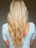 Beautiful long hair /woman. Beautiful blonde long hair /woman royalty free stock photos