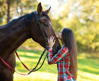 Beautiful long hair young woman with a horse Stock Images