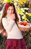Beautiful long-haired brunette girl with apples Stock Photo