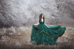 Beautiful long-haired girl in a magnificent emerald fairy dress walks in the winter forest. The wind develops hair and. Hem paying. Fairy tale fantasy story royalty free stock photo