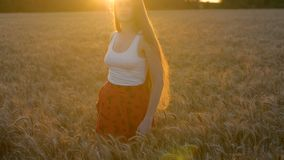Beautiful long-haired young woman spinning in ears of wheat. The setting sun. Inspiration.  stock footage