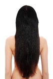 Beautiful long hairs Stock Images