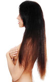 Beautiful long hairs Stock Image