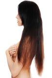Beautiful long hairs Stock Image