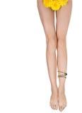 Beautiful long legs Royalty Free Stock Photo