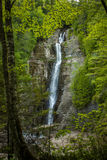Beautiful long waterfall. In the forest Stock Photography