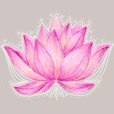 Beautiful lotus flower illustration. Royalty Free Stock Photography