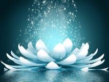 Beautiful lotus flower Royalty Free Stock Images