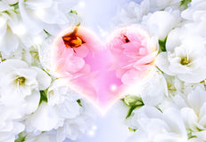 Beautiful Love Background Stock Photography