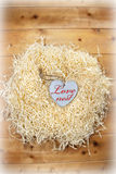 Beautiful love heart in a love nest Royalty Free Stock Image