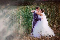 Beautiful lovely bridal couple standing near lake Stock Images