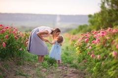 Sweet kiss of beautiful couple child girl and mother in spring garden with pink blossom roses flowers, sunset time. Beautiful lovely couple mother and cute Royalty Free Stock Photography