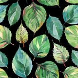 Beautiful lovely cute wonderful graphic bright floral herbal autumn green yellow leaves pattern on dark background watercolor. Hand illustration. Perfect for stock illustration