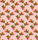 Beautiful lovely graphic artistic abstract bright floral herbal autumn green maple leaves pattern  illustration Royalty Free Stock Photography