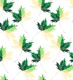 Beautiful lovely graphic artistic abstract bright floral herbal autumn green maple leaves pattern  illustration Royalty Free Stock Photos