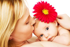 Beautiful loving mother and baby girl. Beautiful loving mother kissing baby girl, on white Royalty Free Stock Image