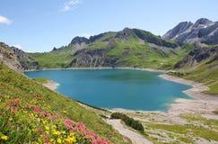 Beautiful lunersee and alpine flowers. Austrian landscape vorarlberg Royalty Free Stock Image
