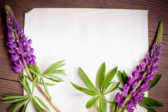 Beautiful lupine flowers on wooden background Stock Photo