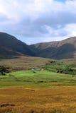 Beautiful lush farm in ireland Royalty Free Stock Image