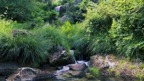 Small waterfall stream stock video
