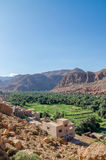 Beautiful lush green oasis with buildings and mountains at Todra Gorge, Morocco, North Africa Royalty Free Stock Photo
