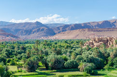 Beautiful lush green oasis with buildings and mountains at Todra Gorge, Morocco, North Africa Stock Photo