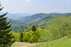 Beautiful lush mountain scenery Royalty Free Stock Images