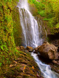 Beautiful Lush Waterfall Royalty Free Stock Image