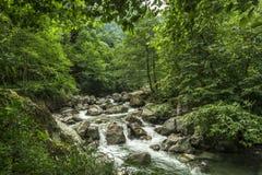 Beautiful Lush Waterfall royalty free stock image