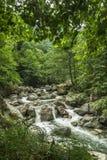 Beautiful Lush Waterfall. Mencune Waterfall, Beautiful Lush Waterfall royalty free stock images