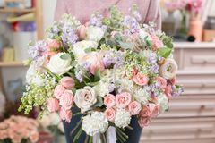 Beautiful luxury bouquet of mixed flowers in woman hand. the work of the florist at a flower shop. Cute lovely girl Stock Photos