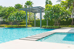 Beautiful luxury swimming pool with palm tree Stock Photography