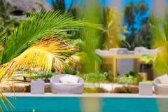 Beautiful luxury umbrella beach and chair around swimming in hotel resort Royalty Free Stock Images