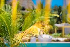 Beautiful luxury umbrella beach and chair around swimming in hotel resort Stock Photo