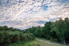 Beautiful mackerel sky cirrocumulus altocumulus cloud formations. Stunning mackerel sky cirrocumulus altocumulus cloud formations in Summer sky landscape Royalty Free Stock Photo